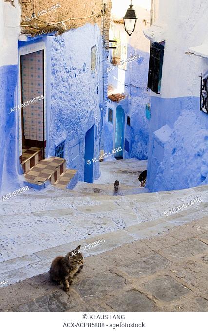 Medina, Chefchaouen, Morocco