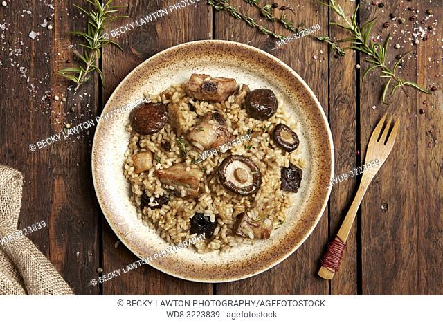 risotto de carne y setas en plato / meat and mushrooms risotto