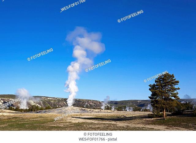 USA, Yellowstone Park, Wyoming, Old Faithful Geyser