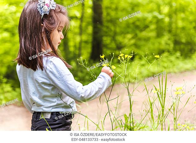 Adorable four years old cute little girl picks wild flower at meadow in a sunny day