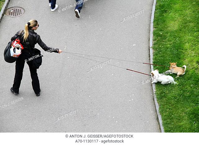 Woman with dogs at the line , zurich , switzerland