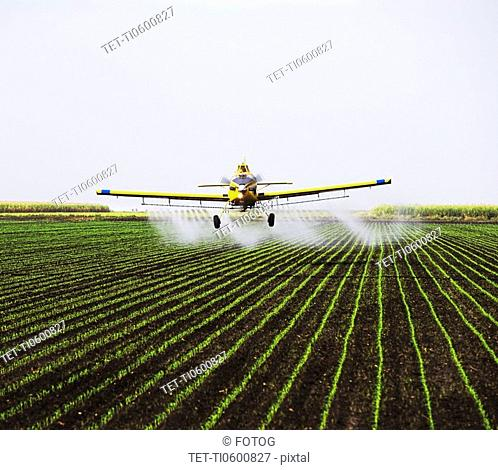 crop-duster plain over field
