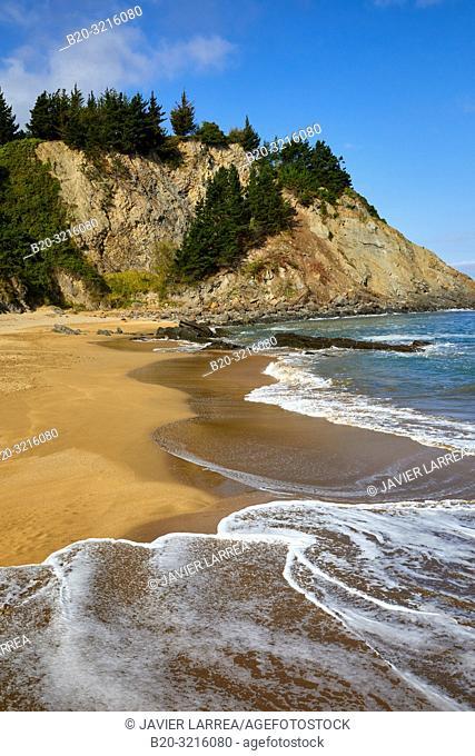 Beach, Mutriku, Gipuzkoa, Basque Country, Spain, Europe