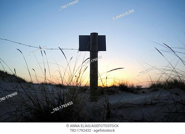 sign and fence at sunset, Doñana National Park, Huelva, Andalusia, Spain Europe