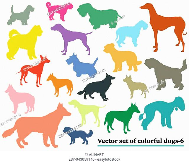 Vector set of colorful isolated different breeds dogs silhouettes on white background. Part 6