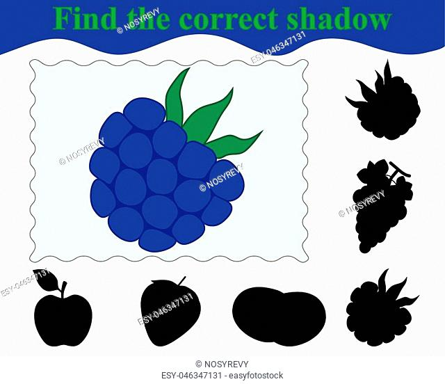 Find the correct shadow of blackberry. Education. Game for children. Vector illustration