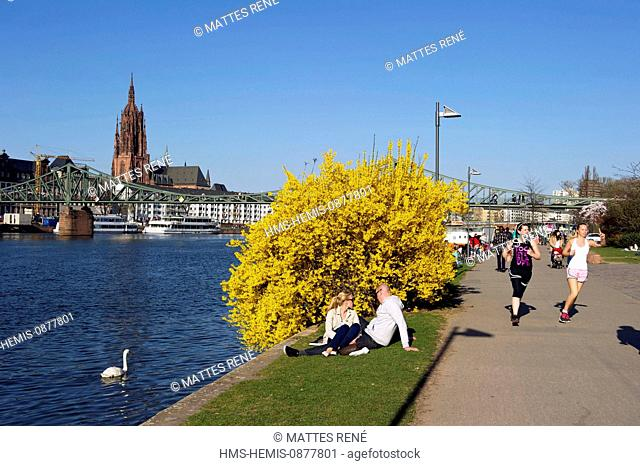 Germany, Hesse, Frankfurt am Main, riverbanks of Main river and St.Bartholomew's cathedral (Dom)