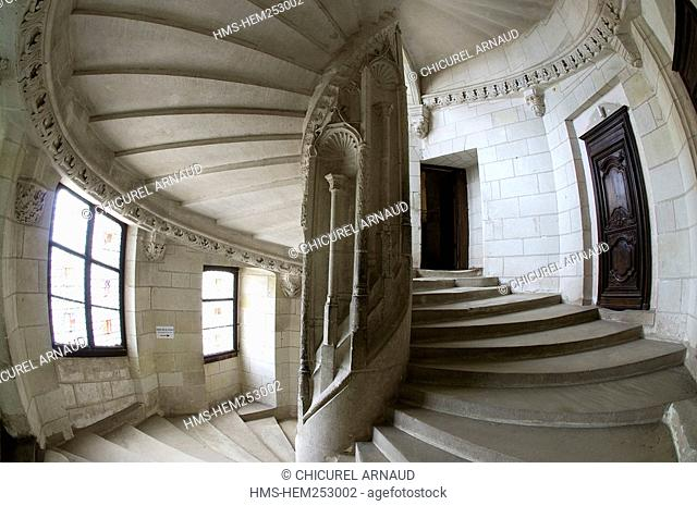 France, Loir et Cher, Loire Valley listed as World Heritage by UNESCO, Chaumont sur Loire, the staircase of the castle of Chaumont sur Loire