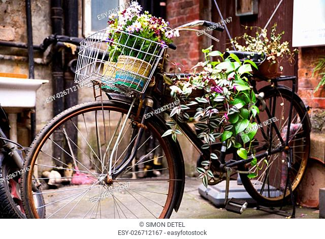Colorful Bicycle carrying flowers parking against the wall