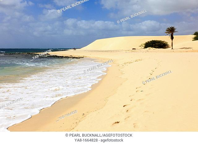 Praia de Chaves, Rabil, Boa Vista, Cape Verde Islands, Africa  Footprints along the shoreline of quiet white sandy beach to a palm tree and sand dunes