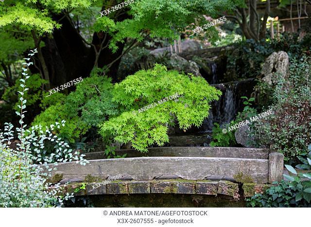 Japanese botanical garden