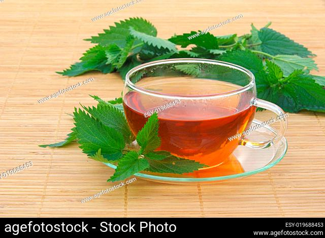 Tee Brennessel - tea nettle 07