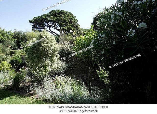 France, Provence Cote d'azur, departement Var,. Saint Tropez and vicinity