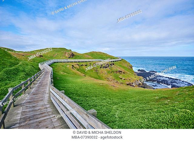 Landscape (The Nobbies), in spring on Phillip Island, Melbourne, Victoria, Australia, Oceania