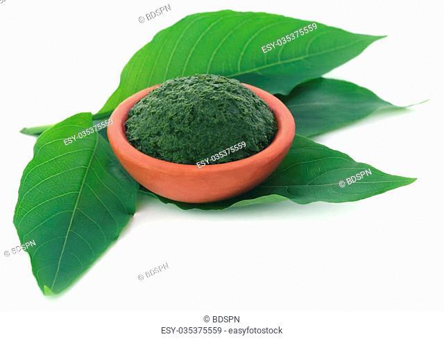 Mashed vitex Negundo or Medicinal Nishinda leaves in a pottery