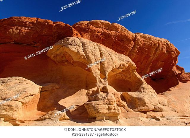 Weathered sandstones, Valley of Fire State Park, Nevada, USA