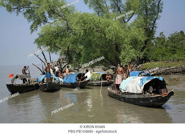 Fishing boats are parked along the bank of a river in Dublar Char, Sundarban, Khulna, Bangladesh November 2009