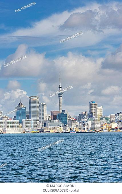 View of harbor and sky tower, Auckland, North Island, New Zealand