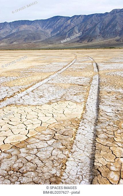 Anza-Borrego Desert State Park in California