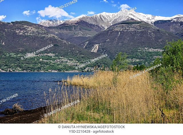 Northern end of Lake Como, Colico, province Lecco, Lombardy, Italy