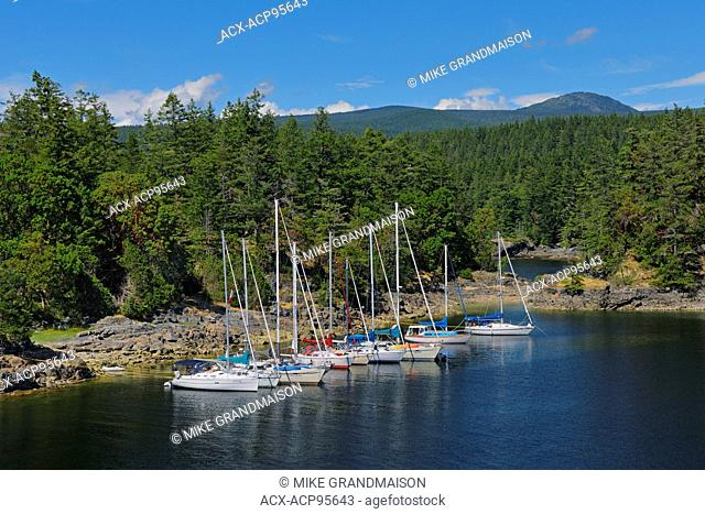 Sailboats docked in cove near Sechelt Smuggler Cove Marine Provincial Park British Columbia Canada