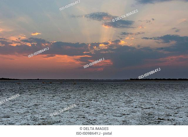 The salt pan at sunset, Nxai Pan, Botswana, Africa