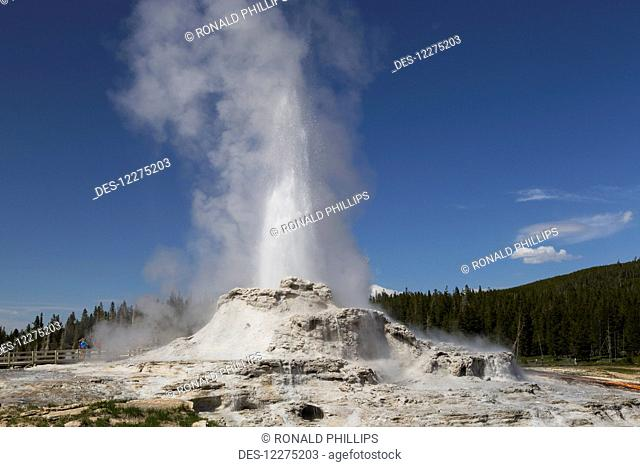 Castle Geyser erupting, Yellowstone National Park; Wyoming, United States of America