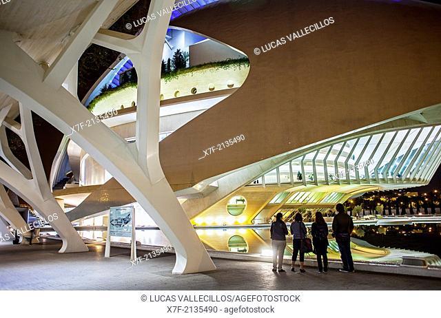 Arcade and Palace of Arts 'Reina Sofia', City of Arts and Sciences. Valencia, Spain