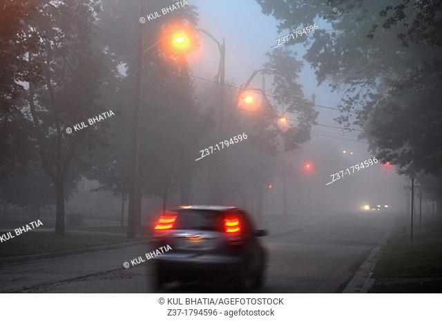Car in early morning fog, Ontario, Canada