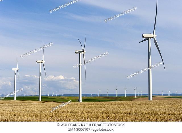 Hopkins Ridge Wind Facility in the Dayton area in Eastern Washington, USA