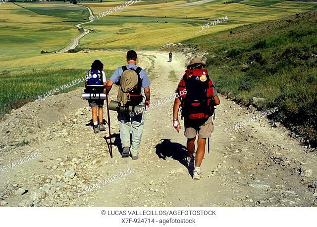 Pilgrims between Rabé de las Calzadas y Hornillos del Camino Cuesta matamulos  Burgos province  Spain  Camino de Santiago