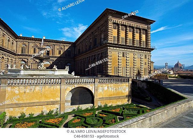 Pitti Palace. Florence. Tuscany. Italy