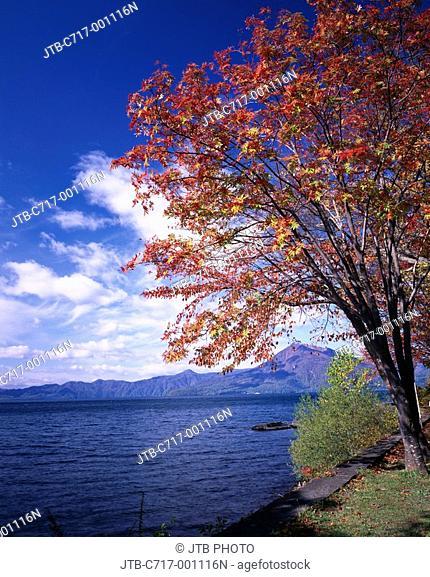 Red leaves Blue sky Clouds Water surface Wave Autumn Lake Shikotsu Mt  Eniwa Chitose Hokkaido Japan