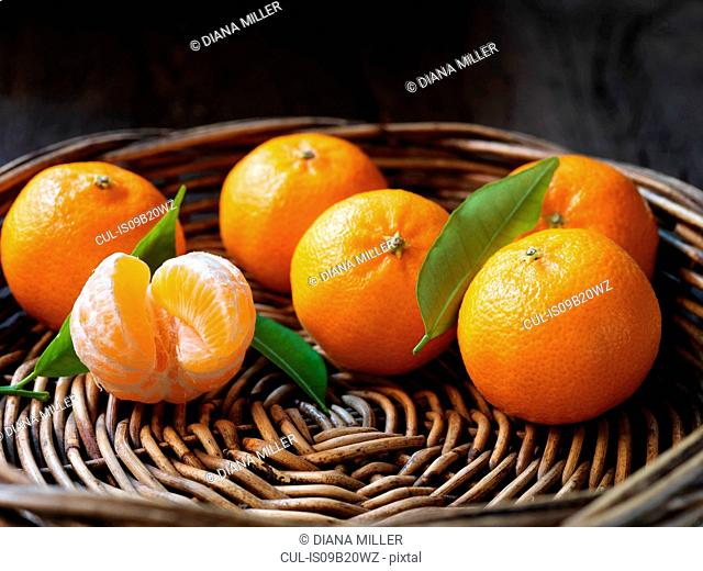 Fresh organic fruit, clementines with leaves in wicker bowl
