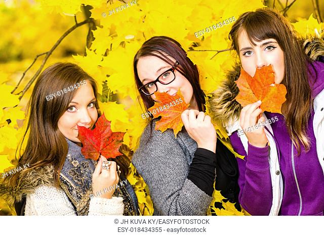 Sisters posing together on autumnal park, maple leaves on background