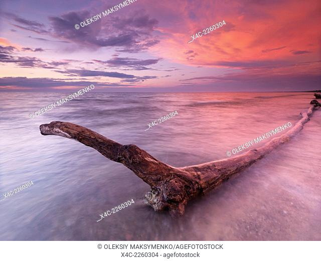 Driftwood in a beautiful tranquil red sunset scenery at lake Huron, Pinery Provincial Park, Grand Bend, Ontario, Canada