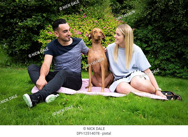 Young couple sitting on a blanket on the grass with their Vizsla dog; Reigate, Surrey, England
