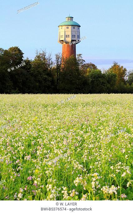 old water tower of Edingen, Germany, Edingen