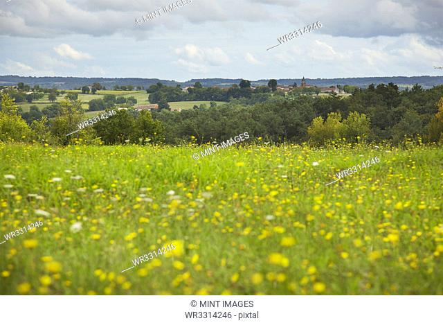 View of French Village from field of Wild Flowers