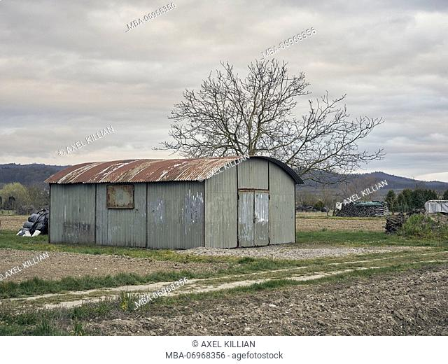 old shed made of corrugated iron on a meadow, tree, autumn