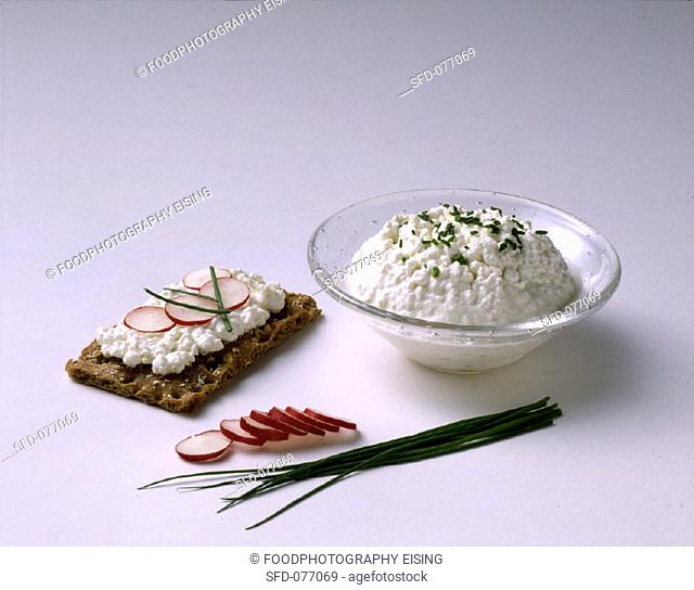 Cottage Cheese in White Bowl