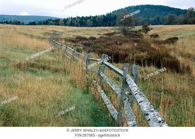 Highland Scenic Highway. Monongahela National Forest. West Virginia. USA