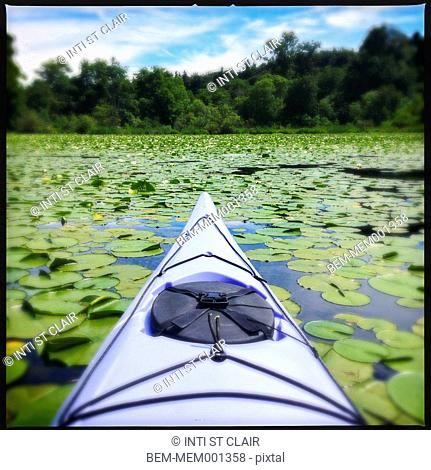 Kayak floating in lake of lily pads