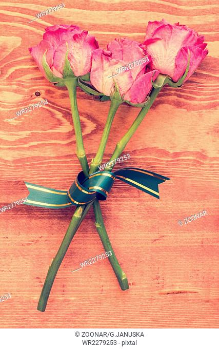 Three old roses with bow