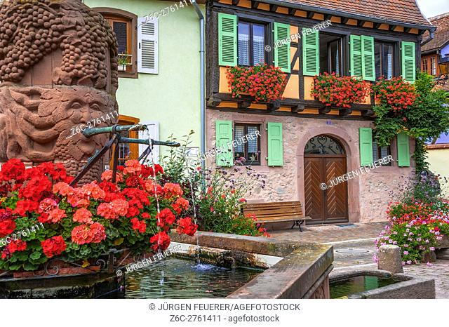 Kientzheim, next to Kaysersberg, scenic village, route of vine Alsatian, Alsace, France