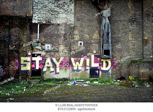 Stay Wild, Graffitty in the back of a building in the city of London, England, UK, Europe