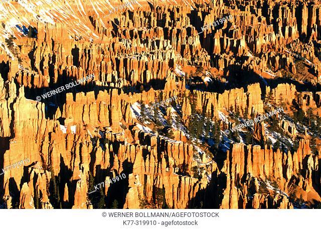 Bryce Canyon National Park. Utah. USA