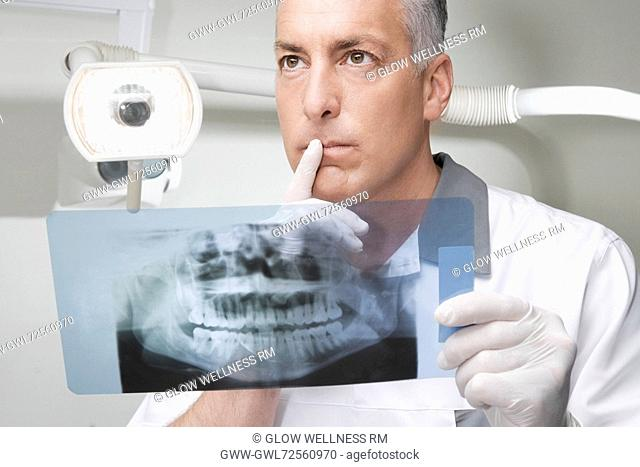 Dentist examining an X-Ray report
