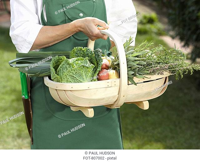 Midsection of a man holding a basket of vegetables