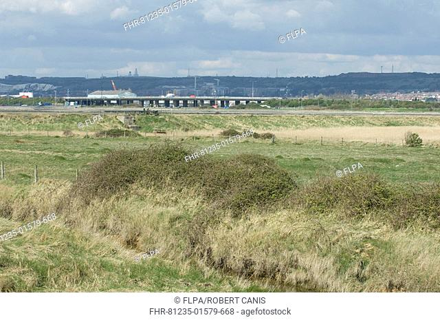 View of grazing marsh habitat, road bridge in distance, Farlington Marshes Nature Reserve, Hampshire, England